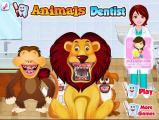 רופא שיניים לחיות - Bugs.co.il