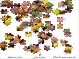 Jigsaw Smarties - Bugs.co.il
