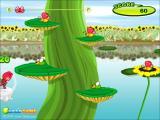צפרדע קופצת - Bugs.co.il
