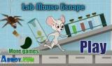 בריחתו של עכבר המעבדה - Bugs.co.il